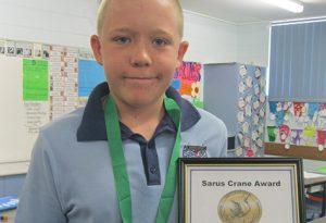 Sarus Crane Corey McDonald_2013